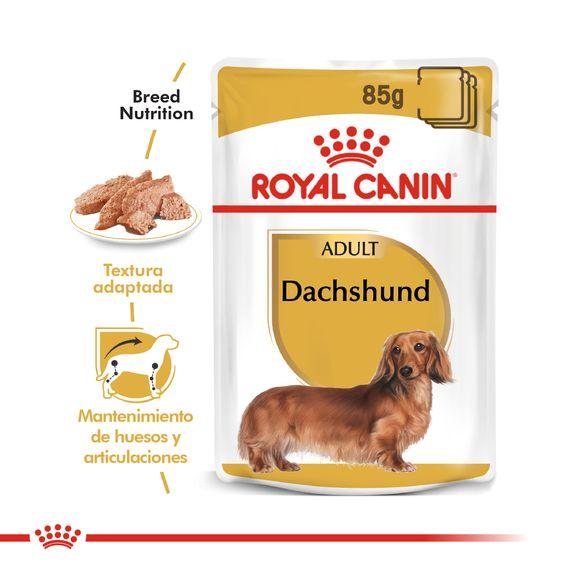 DACHSHUND_POUCH_05