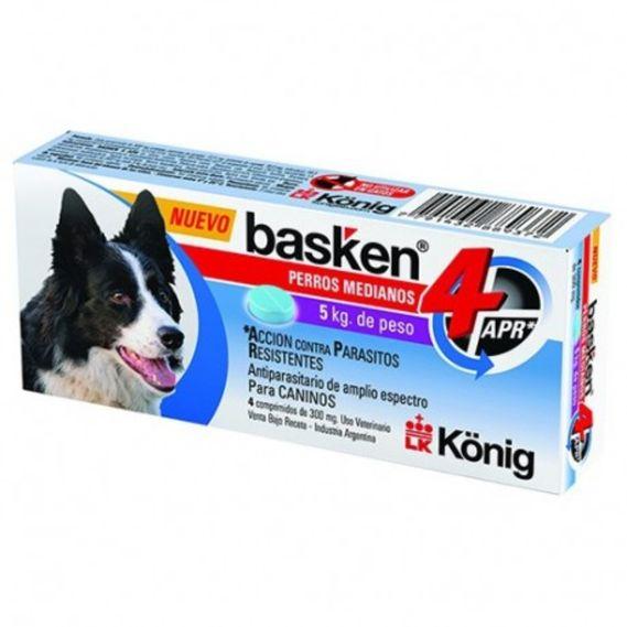 konig-basken-4-apr-perros-medianos