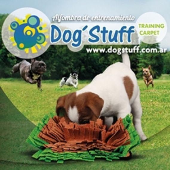 pr1289_dogstuff_training--1-