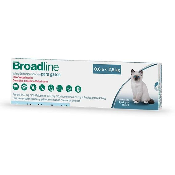 broadline-hasta-25