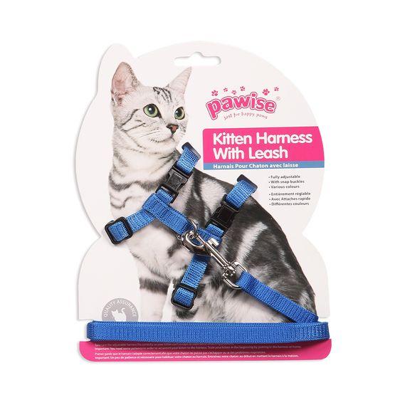 Kitten-Harness-Leash-Blue-cod.28001-3